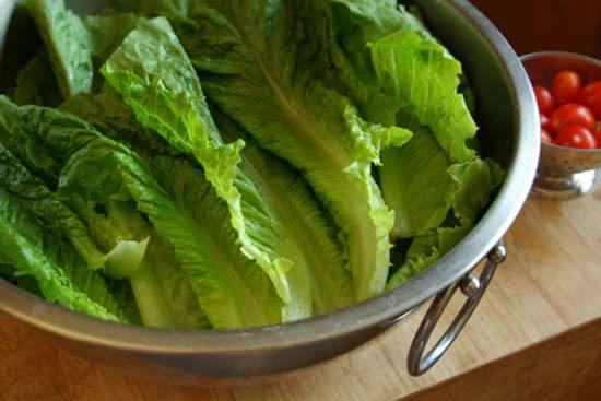 Легендарный римский салат: романо. романо