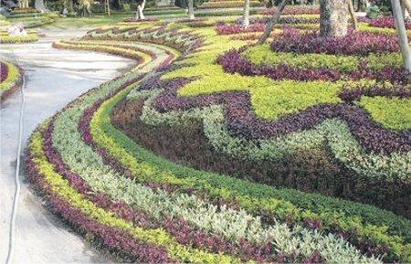 Украшаем в саду то, что нельзя украсить. Украшаем в саду то, что нельзя 1