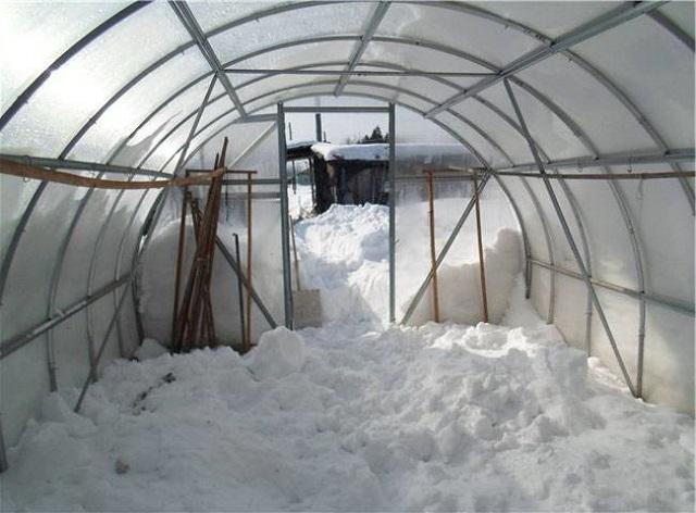 Снег в теплице нужен и важен!. 14621.jpeg