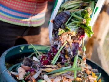 Делаем компост для огорода своими руками