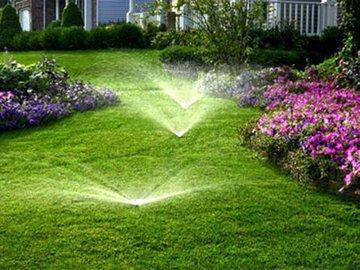 Как правильно удобрять идеальный газон