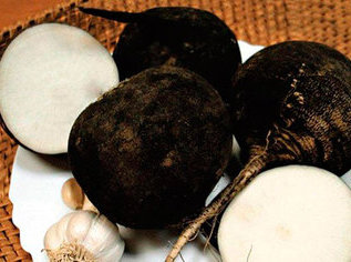 Черная редька радикально лечит от кашля
