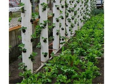 Вертикальные грядки: увеличиваем огород